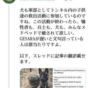 トランプ軍【子供救出】犬も軍部としてトンネル内の子供達の救出活動に参加!この活動が終わったら、犠牲者も、兵士も、犬も、みんなメドベッドで癒されて欲しい!GESARAが遅いと文句言っている人は罰当たり