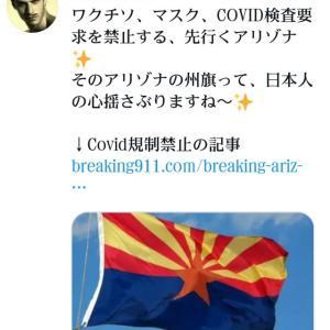 コロナワクチン、マスク、COVID検査要求を禁止する!先行くアリゾナ!そのアリゾナの州旗って、日本人の心揺さぶりますね〜!アリゾナ州知事、大統領命令に署名!学校にワクチン、マスク、COVID検査