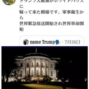 トランプ大統領がホワイトハウスに帰って来た模様です!軍事衛星から世界緊急放送開始され【世界革命開始】イルミナティに勝利!新たな日本に【世界平和統一政府誕生】各政府は解体消滅!大統領は8月13日に