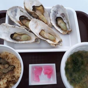 松島の海鮮市場で牡蠣尽くしランチ!「松島さかな市場」(仙台/海鮮料理)