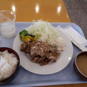 横須賀のソレイユの丘の中にあるレストラン!「プロヴァンス」(三崎/カフェ)