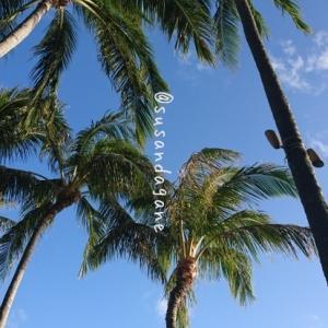 「そうだ ! Hawaii へ逝こうヽ(°∀°)ノ 2018春」【2】1日目 ホテル到着編
