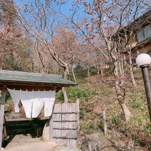 【日々のこと】お出かけランチ寺家ふるさと村 ご近所先生方との新年会