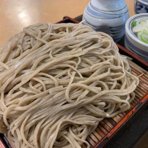 JA南彩 農協食堂で大盛りもりそばを食え! 菖蒲町