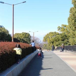 久々に昭和記念公園!お友達と。