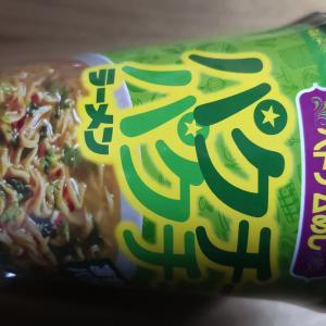 おいしいベトナムめしパクチーパクチーラーメン