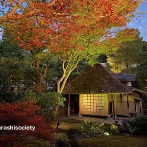 京都の夜景 絶景スポットはここ!