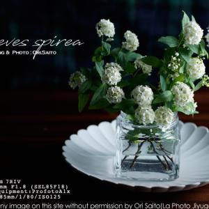 花が恋するスタイリング、略して恋バナ を 自由が丘で。 profotoA1x + SEL85F18 作例
