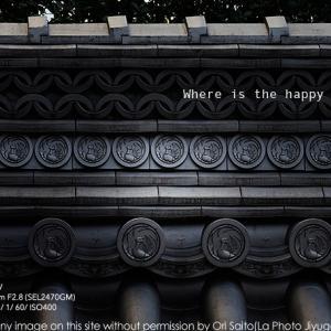 歌舞伎座『菅原伝授手習鑑』、幸せの鳳凰を sony α7RIV + FE 24-70mm F2.8 GM(SEL2470GM) 実写