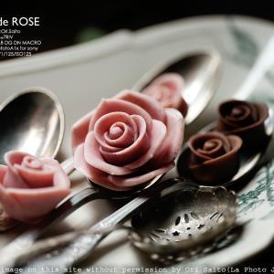 薔薇は薔薇でもチョコレート SIGMA 105mm F2.8 DG DN MACRO Art 作例 #SIGMA105mmArtMACRO #シグマクロ @message_de_rose