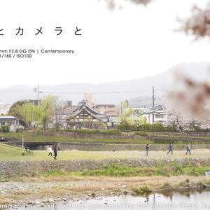 京都とカメラと鴨川さんぽ。シグマ 28-70mm F2.8 DG DN Contemporary  #京都 #PhotoShop #SIGMA