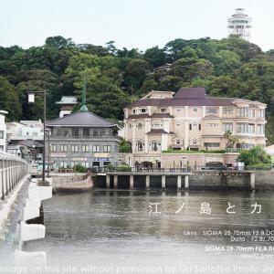 江ノ島とカメラと軽いレンズ。SIGMA 28-70mm F2.8 DG DN Contemporary 実写 #江ノ島 #enoshima