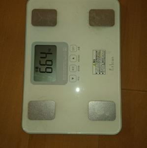 66.4キロ