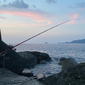 手軽に楽しめるライト石鯛 東伊豆で底物釣りを楽しむ