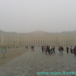 霧が立ち込めているウィーンの街