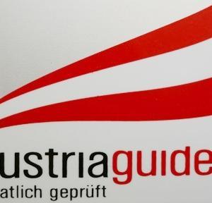 オーストリアでのガイド業務は国家資格であり、空港送迎、食事等のアテンドにも許可が必要です