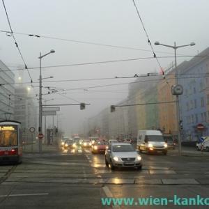 冬の時期でも霧が
