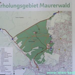 Maurer Wald(マウラー・ヴァルト)