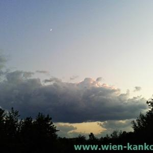 夜空を見てリラックス