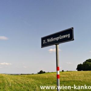 ウィーンとは思えない草原にぽつんと立つ通りの表示