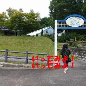 田沢湖のたつこ像と浮木神社