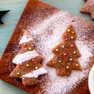 ノワドゥブールのクリスマス【フィナンシェの人気店】限定クッキーや愛らしいクリスマスケーキ