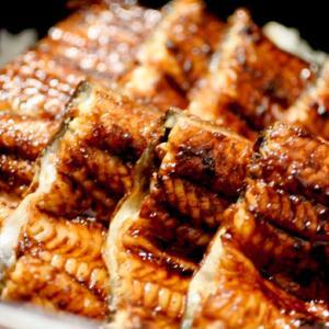 炭焼うな富士「肝入りうなぎ丼」名古屋の名店!1000度の炭火で焼くカリ&フワ食感|ノンストップ