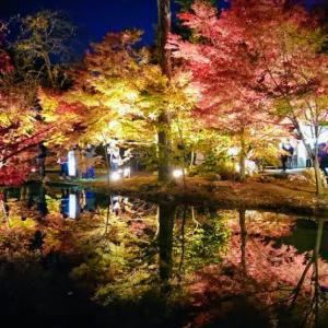 曽木公園 逆さもみじライトアップ