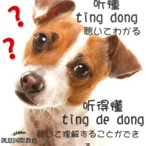 中国語の「听懂」と「听得懂」の使い分け