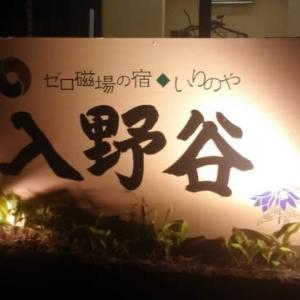 「入野谷」さんでいただいた美味しいバーニャカウダ。