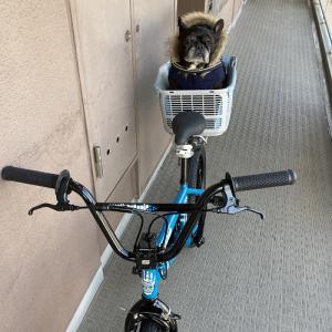 自転車競走♪