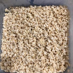 発芽玄米、作ってみました