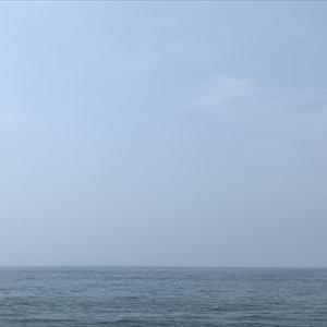 梅雨明けのいぶし銀。-南知多ダンゴ釣り-