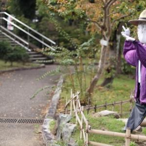 ひらかた菊フェスティバル2019