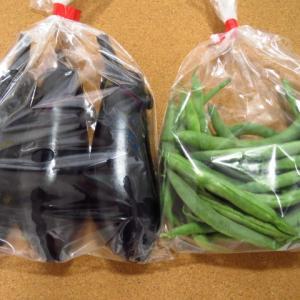 無人販売で野菜購入