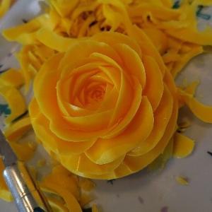 黄色いバラは元気の色。