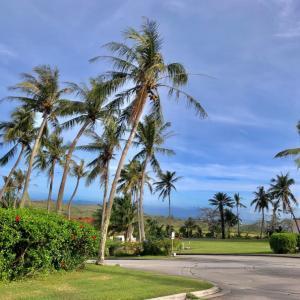 レオパレスリゾートグアムで2018年カウントダウンパーティー花火を楽しむ/ 2018 Leo Palace Resort Guam Countdown Party & Fireworks