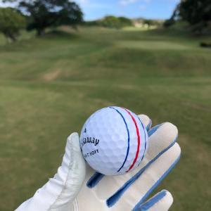 だいぶグラミー家に慣れた様子です/ Saturday Golf @ Leo Palace Resort Country Club in Guam