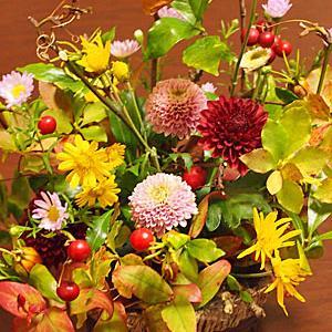 秋の野花と岩茶条で故人を偲ぶ時間
