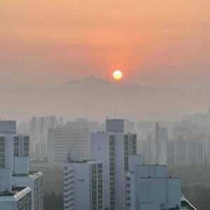 朝の太陽!(韓国生活)