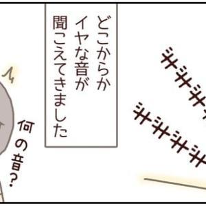 ネコごろね 第136話:【何の音?】