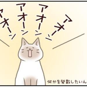ネコごろね 第142話:【合いの手】