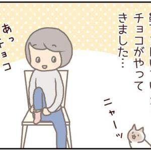 ネコごろね 第147話:【いたずらされているのはどっち?】