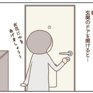 玄関のドアを開けると!