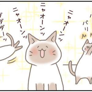ネコごろね 第177話:【寝たのに~】