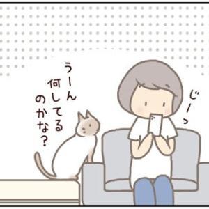 ネコごろね 第183話:【「んふっ!」】
