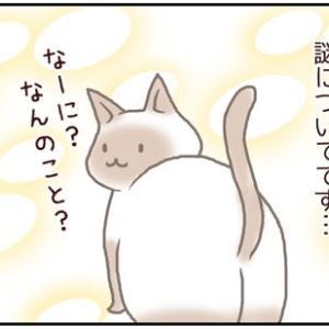 ネコごろね 第189話:【何か出てるの?】