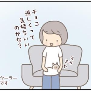 ネコごろね 第190話:【用事はいいの?】