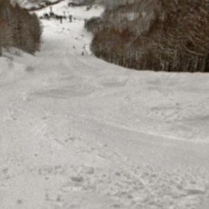 スキー2020-21シーズン~総合滑想IIIの巻~