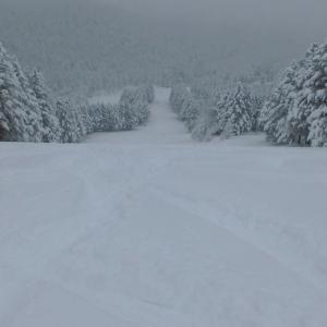 スキー2020-21シーズン~The Great Escapeの巻~